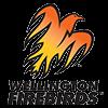 Wellington Firebirds-Cricket Team